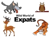 Guest Post: Wild World of Expats