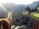 Machu Picchu Day 1 (lots ofpics!)