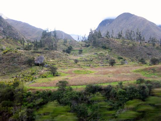 Blurry landscape as our train charges toward Ollantaytambo.